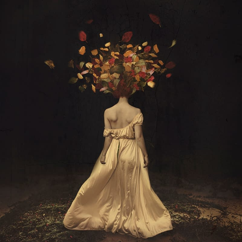 the falling of autumn darkness brooke shaden